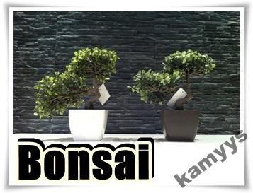 Bonsai Bukszpan 25 Cm Drzewko Sztuczne Najtaniej 4414843190 Oficjalne Archiwum Allegro Bonsai Plants