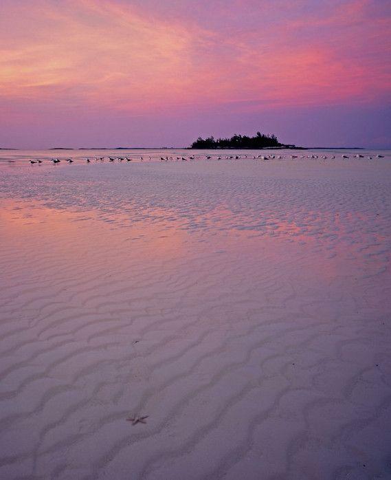 the Caribbean's Abaco Islands