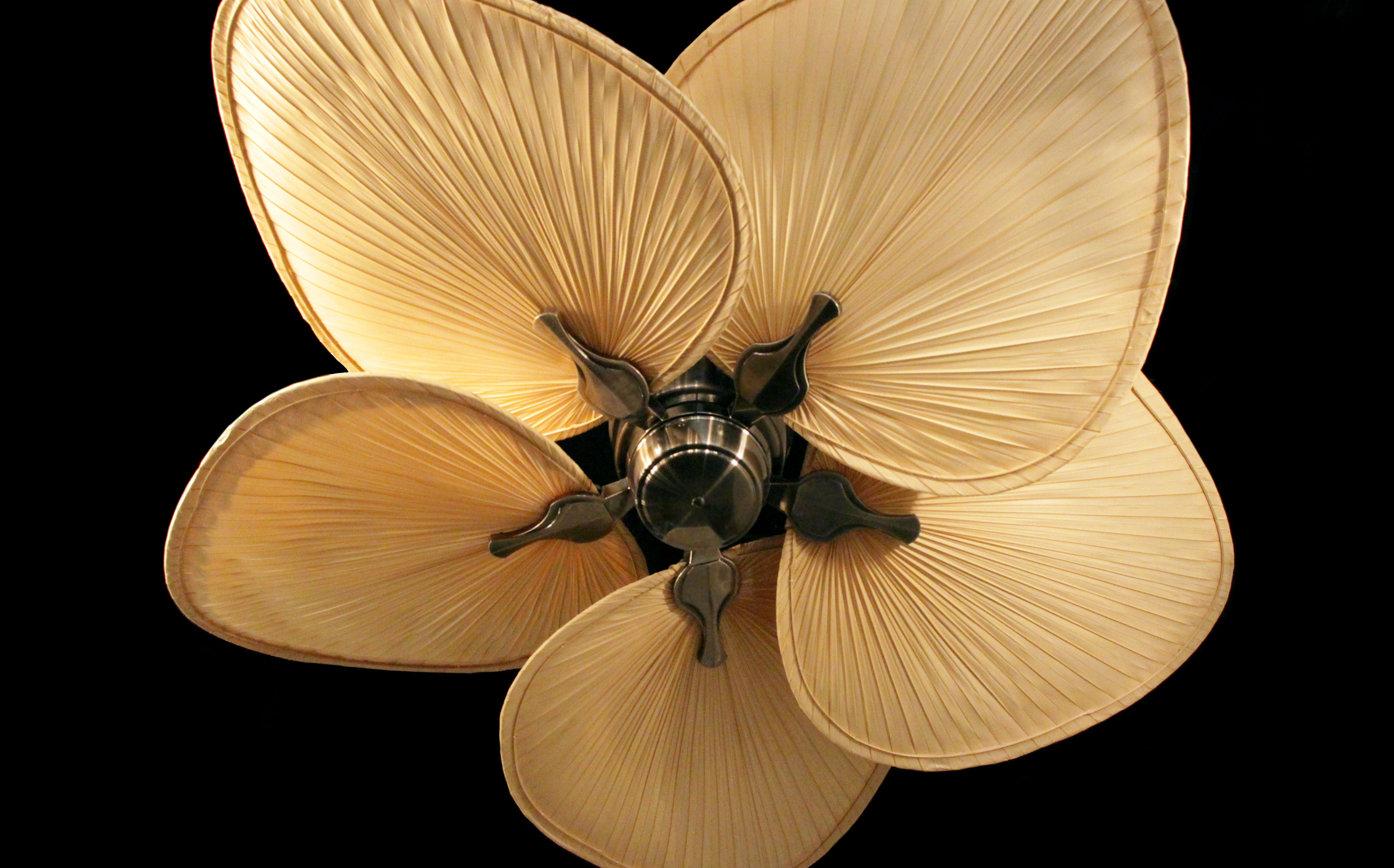 The Islander Has Been A Staple In Tropical Ceiling Fans