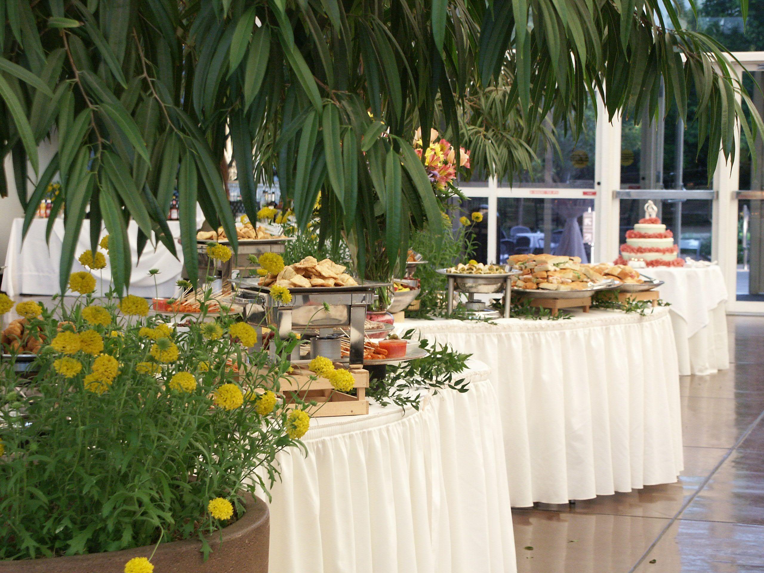 Buffet table in Monsanto Hall. Missouri botanical garden