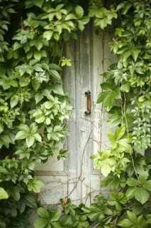 "Put an old door  in a bush or against a fence and create a ""secret garden"" entrance."