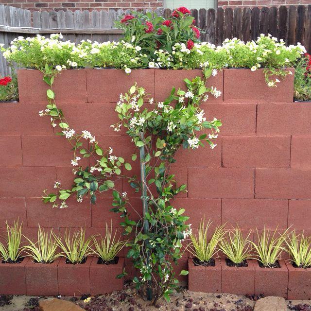 Cinder Block Wall Built To Hide Pool Pump Block Sound Backyard Fences Fence Landscaping Garden Fence