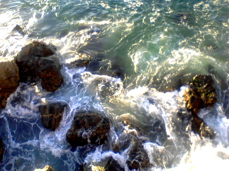 En Avenida Marina, Viña del Mar