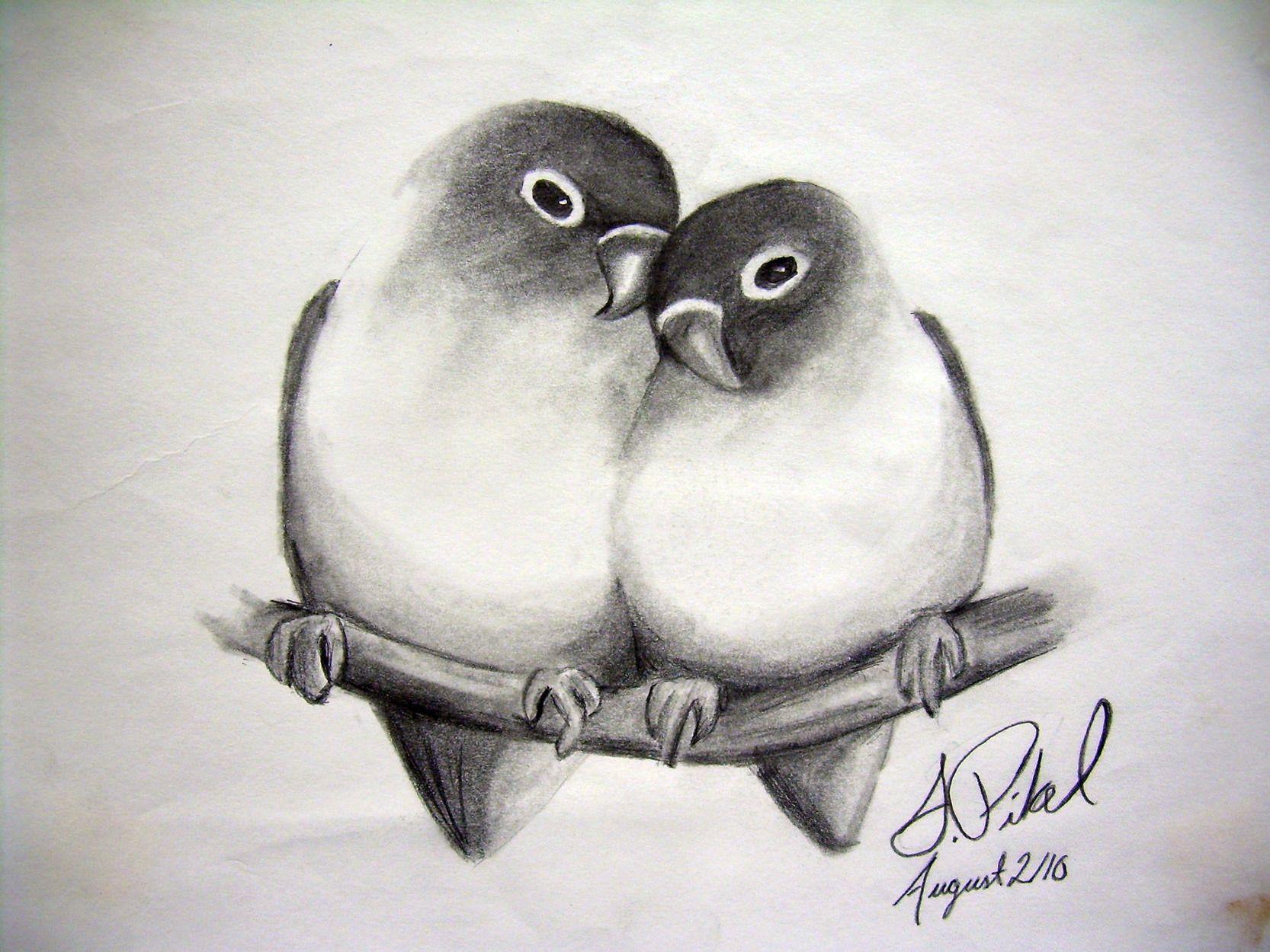 Uncategorized Love Birds Drawing de recherche dimages pour pencil drawing love noir love