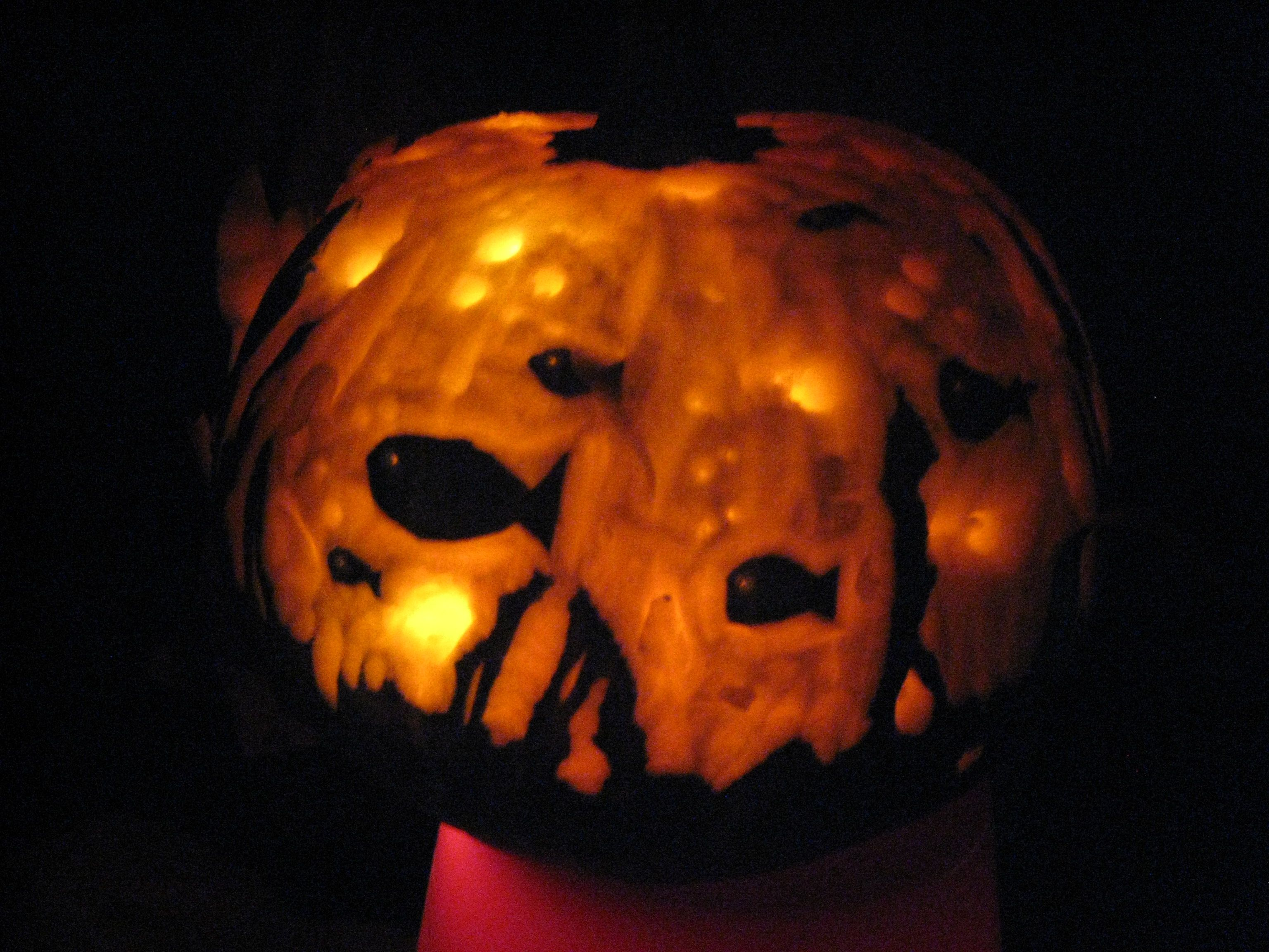 Fish bowl relief carved pumpkin | My creativity at work ...