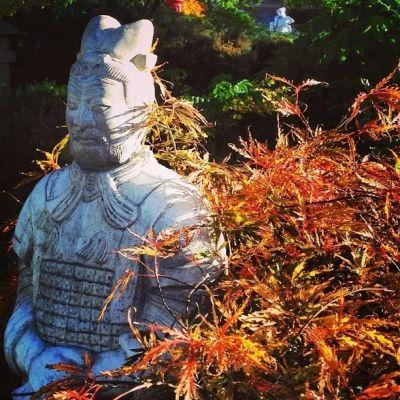 Terracotta Warrior Garden Ornament From GardenSite. #sculpture #statue # China #Chinese #acer #stone #ornamnet #oriental