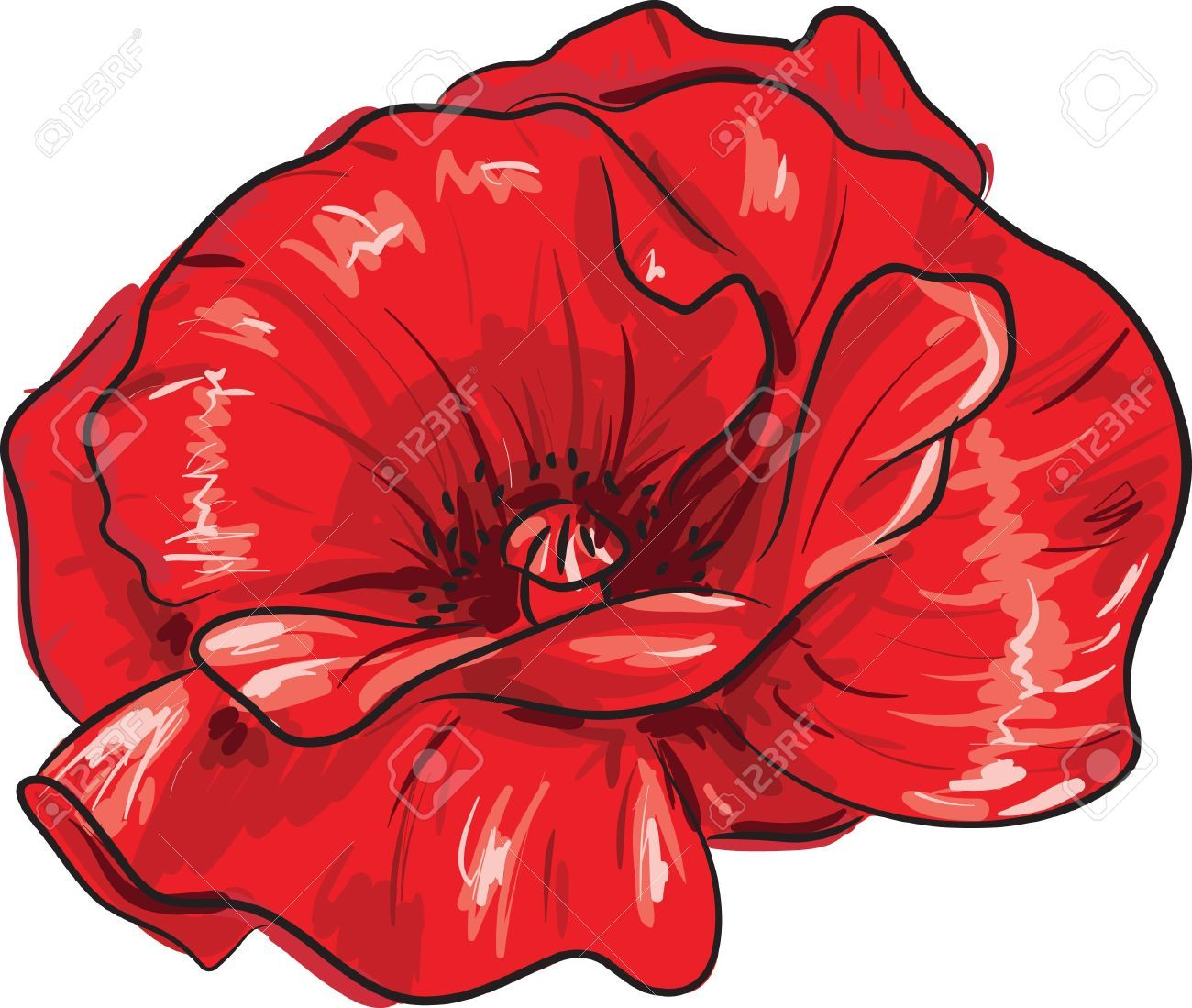 Alfa Img Showing Drawing Of Poppy Flower Seed Tattoo You