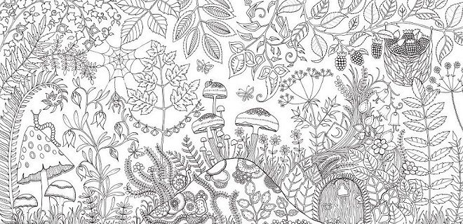 Clumsy Doodle Meet Johanna Basford And Explore Her Coloring Books
