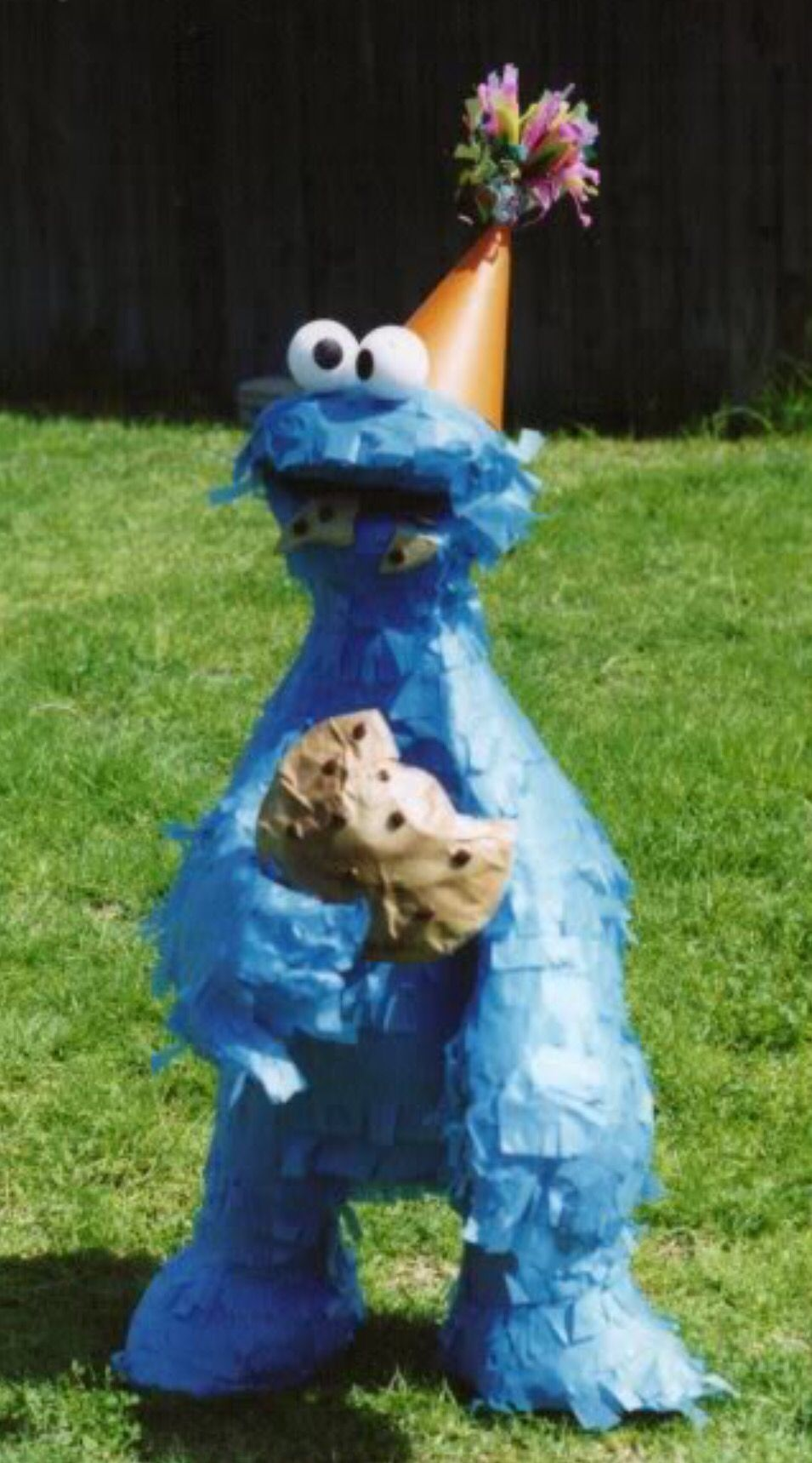 Cookie Monster  Party piñata