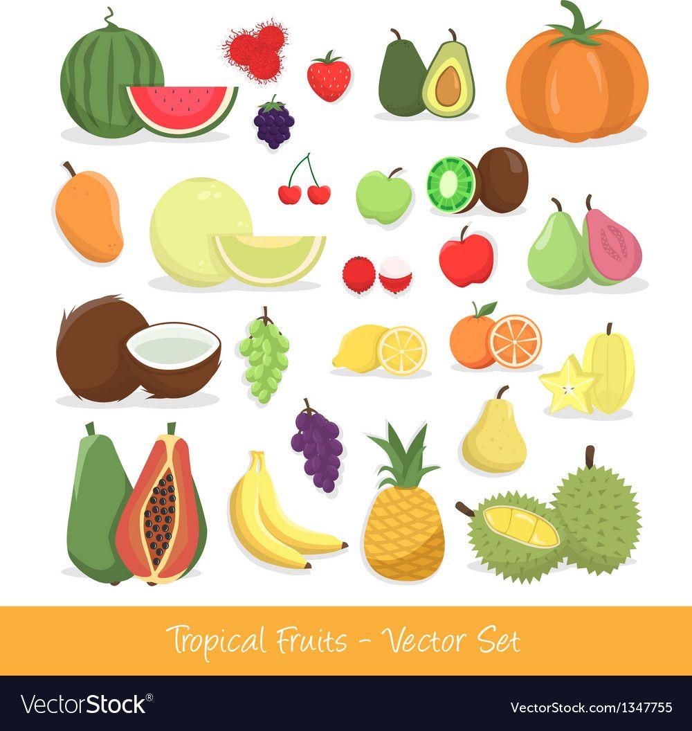 Tropical Fruit Set vector image on ในปี 2020 ผลไม้