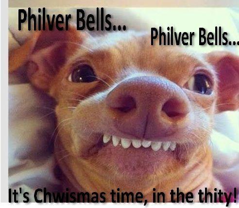 33ef07f1a691c717c8cc187c330b1501 philver bells by aislingh stuff pinterest humor, funny