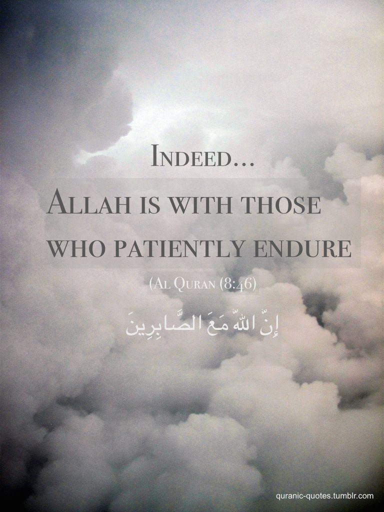 Quranic Quotes Indeed Allah Is With Those Who Endure Patiently 8 46 Quran Verses Quran Quotes Photo Album Quote