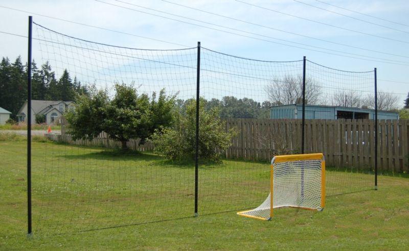 Genial Backyard Soccer Setup