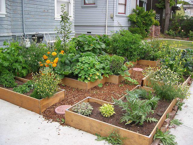 Berkeley Tetris Garden With Images Garden Patio Garden