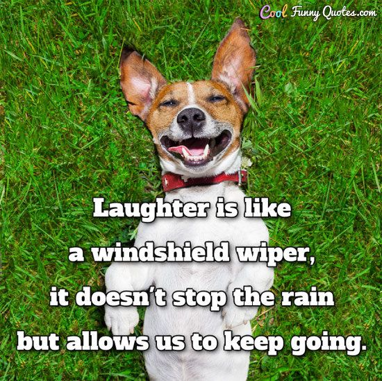 Funny Quote Funny Inspirational Life Quotes Laughter Funny Quotes