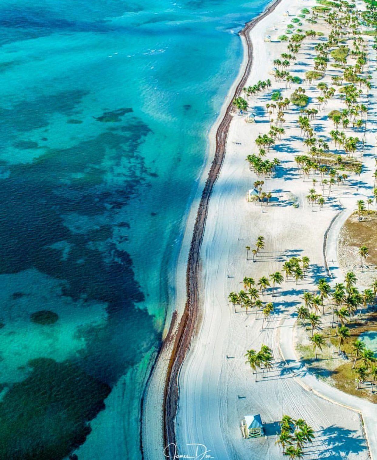 #pureflorida #beachpicturesalone | Florida images, Florida ...