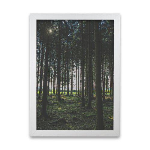 Im Wald gerahmter Fotodruck Alpen Home Größe: 59,4 cm H x 42 cm B x H x 42 cm B, Rahmenoptionen: Weiß