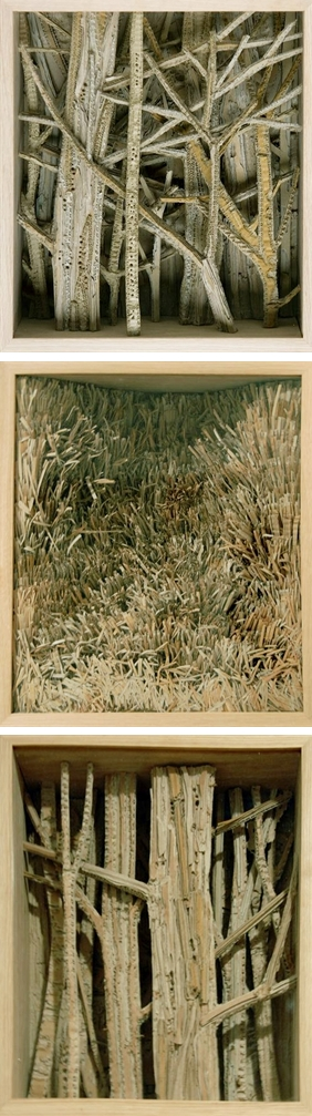 Eva Jospin . . . cardboard forests and grasslands . . . beautiful