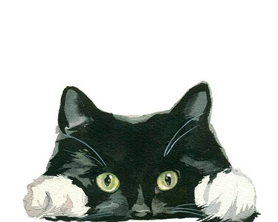 Black And White Tuxedo Cat Clipart Hand Painted Watercolor Etsy Watercolor Cat Cat Art Cat Clipart