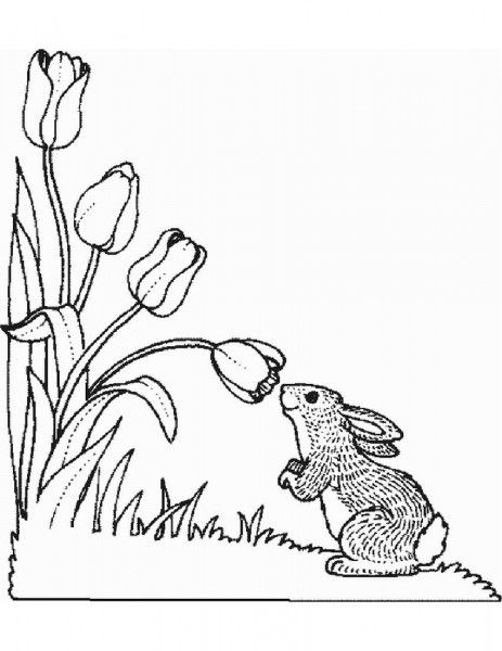 Flowers To Color Free Coloring Pages Part 2 Coloring Pages Spring Coloring Pages Easter Coloring Pages