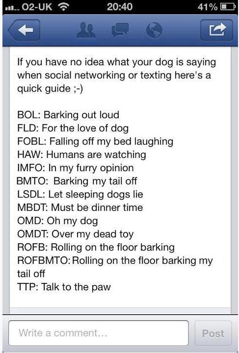 Dog texting Dog texts, Funny dog texts, Texts