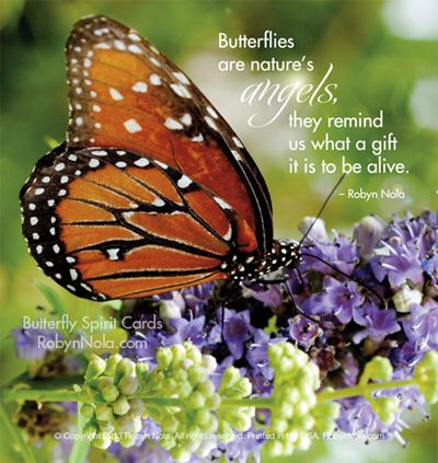 """""""Butterflies are nature's angels, they remind us what a"""