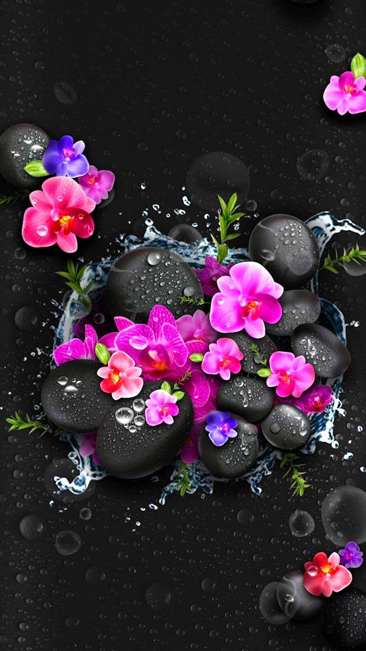 Pink Black Thursday Mystery Wallpaper Free Themes Samsung Oppo Vivo Flower Phone Wallpaper Flower Wallpaper Flower Art Flower theme wallpaper images