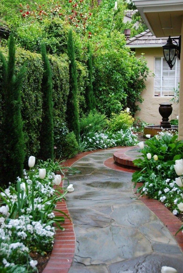 Mediterrane Gartengestaltung Mediterrane Pflanzen Zypresse