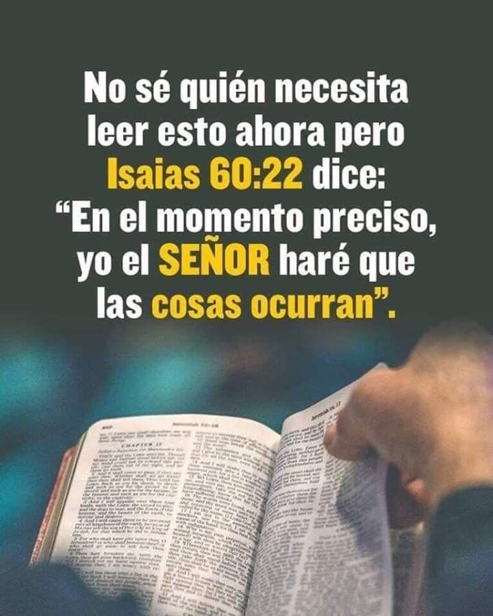 Indudablemente Dios Tiene Sus Tiempos Desde Que Creo El Mundo Y El Mismo Dice Mis Tiempos No Son T En 2020 Frases Espirituales Palabra De Dios Biblia Palabra De Vida