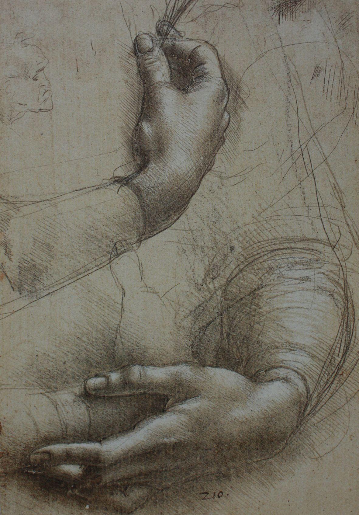 Estudio anatómico de manos. Es un grabado realizado por Leonardo da ...