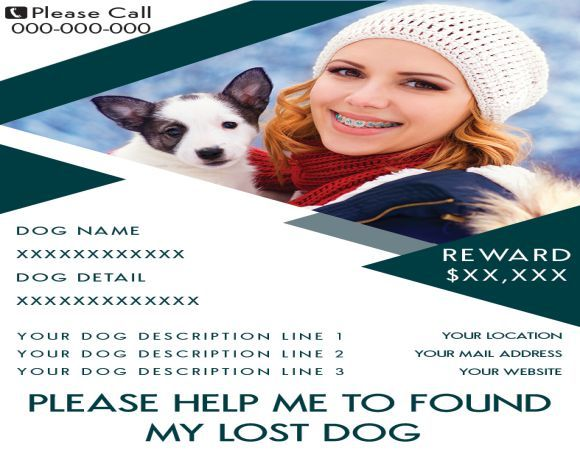 Lost Dog Rewards Found Dog Flyer Pinterest Flyer design - Lost Dog Flyer Examples