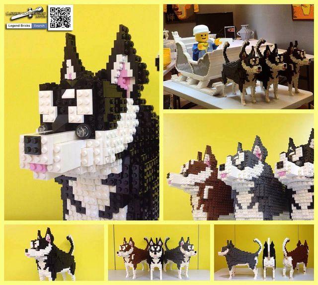 Lego Friends Tiere 20 Husky Huskies