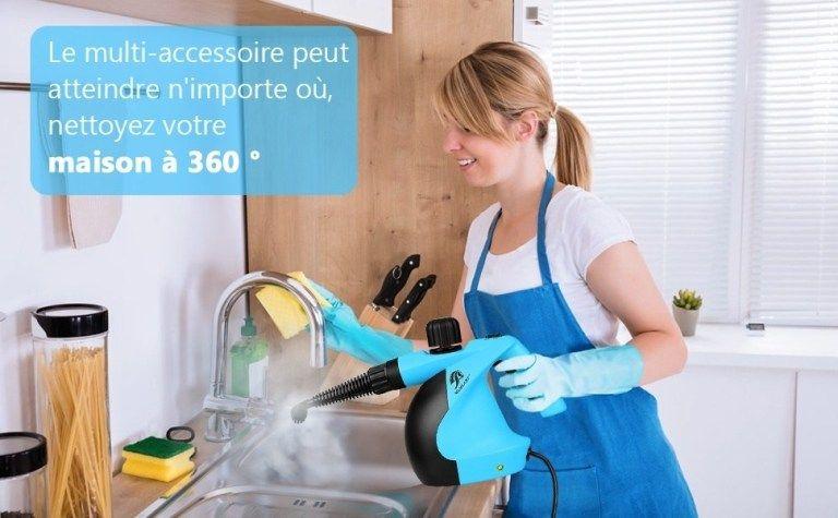 Le Nettoyeur Vapeur Contre Les Punaises De Lit Punaises De Lit Nettoyeur Vapeur Nettoyeur