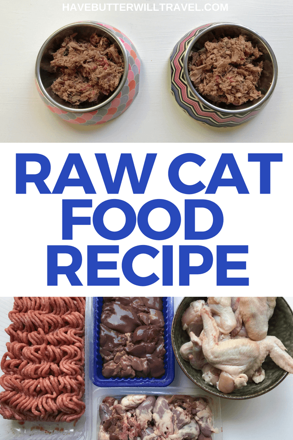 Raw Cat Food Recipe Homemade cat food, Raw pet food