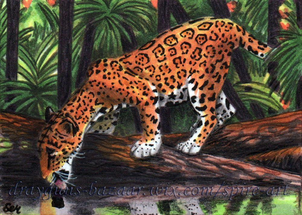 Aceo Original Art Animal Jaguar Cat Jungle Forest Miniature Drawing Smcneill Ebay Aceo Art Animal Cat Jaguar Jungle Animal Art Art Friend Animals