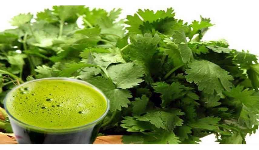 قناة الکوثر الفضائیة فوائد رهيبة لعصير الكزبرة تعرفوا عليها صحة الكوثر يمكنك تنظيف كليتيك بواسطة الكزبرة الخضراء من الخضراوات