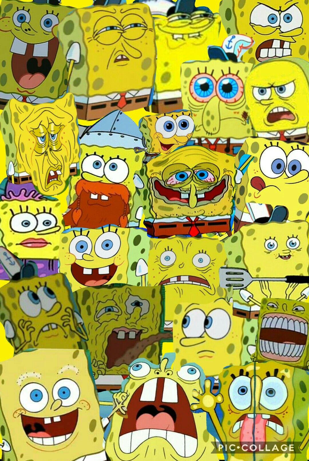 Collage Of Spongebob By Chrissy Kartun