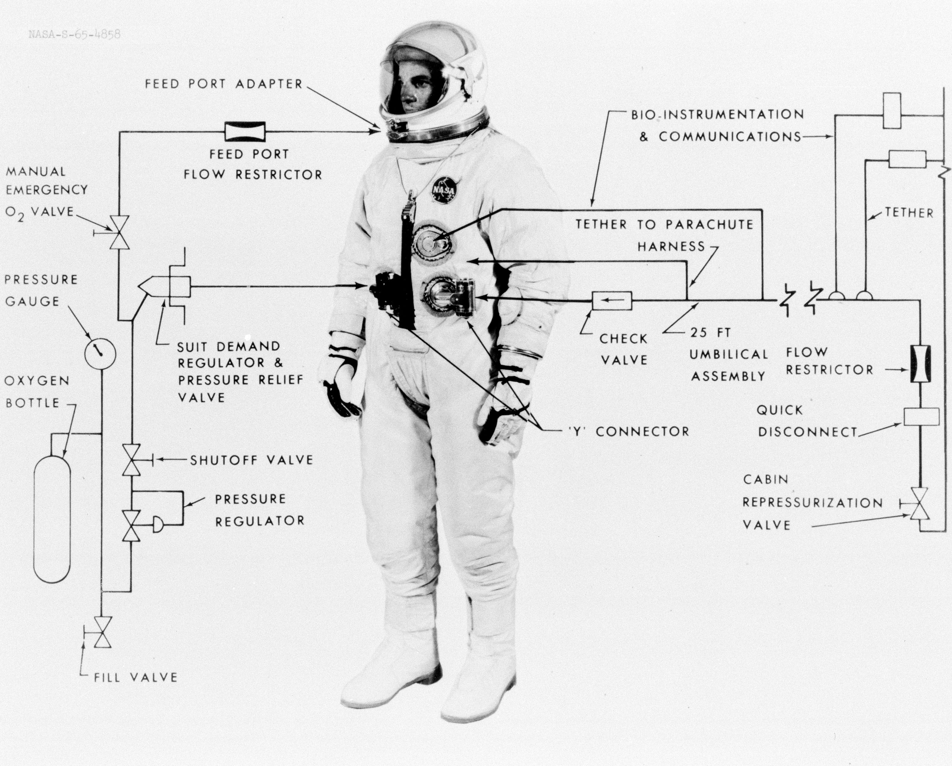 May 1965 Illustrative Diagram Showing The Various Features Of The G 4c Extravehicular Spacesuit Project Gemini Gemini Space Suit