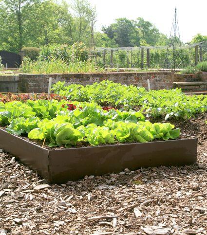 C\'est facile à aménager votre jardin avec d\'EasyBed , un carré ...