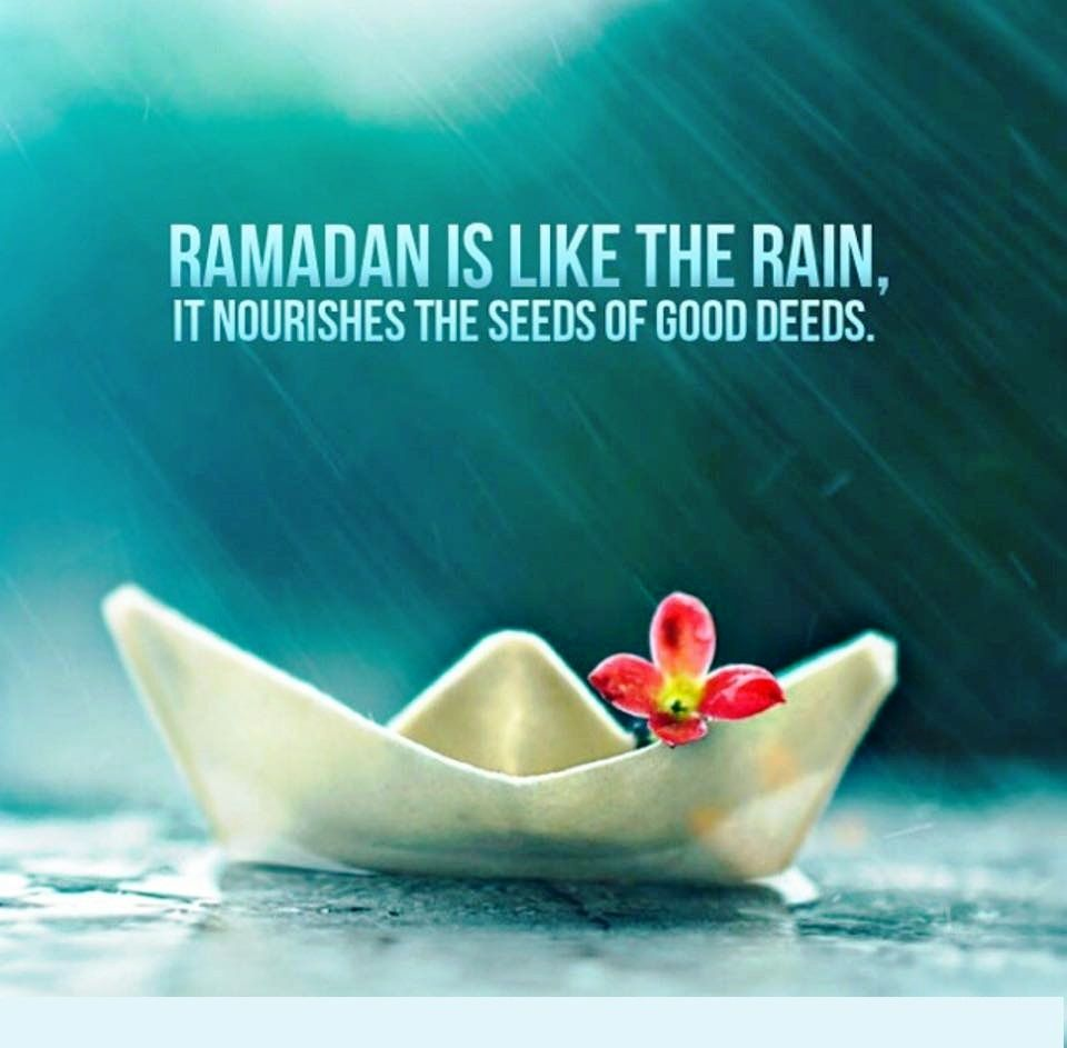 Let the goodness flow this Ramadan! Shower everything with only