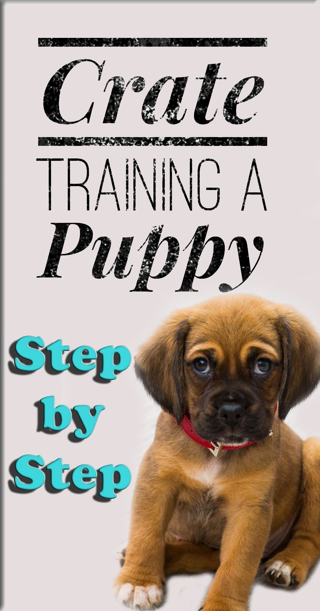 Crate Training Puppy At Night Step By Step Guide To Crate Training Your Get Your Puppy To Stop Barki Puppy Training Potty Training Puppy Crate Training Puppy
