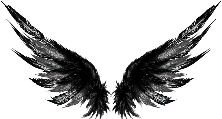 Dark Wings Tattoo Designs Is A Free Transparent Png Image Search And Find More On Vippng Wings Tattoo Wing Tattoo Designs Wing Tattoos On Back
