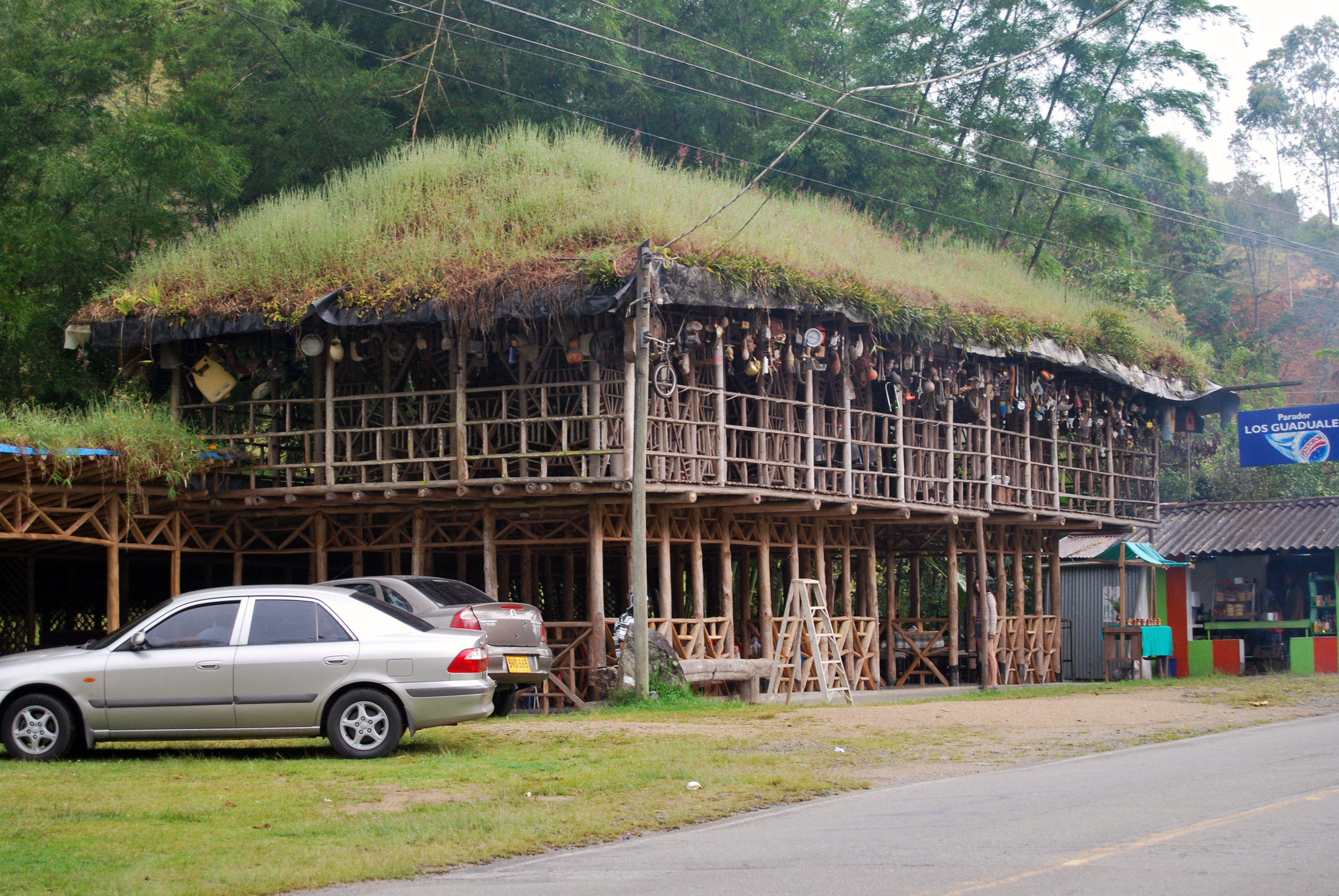Casa ecolgica con techo en csped y estructura en guadua y en madera de rbol loco Montanoa