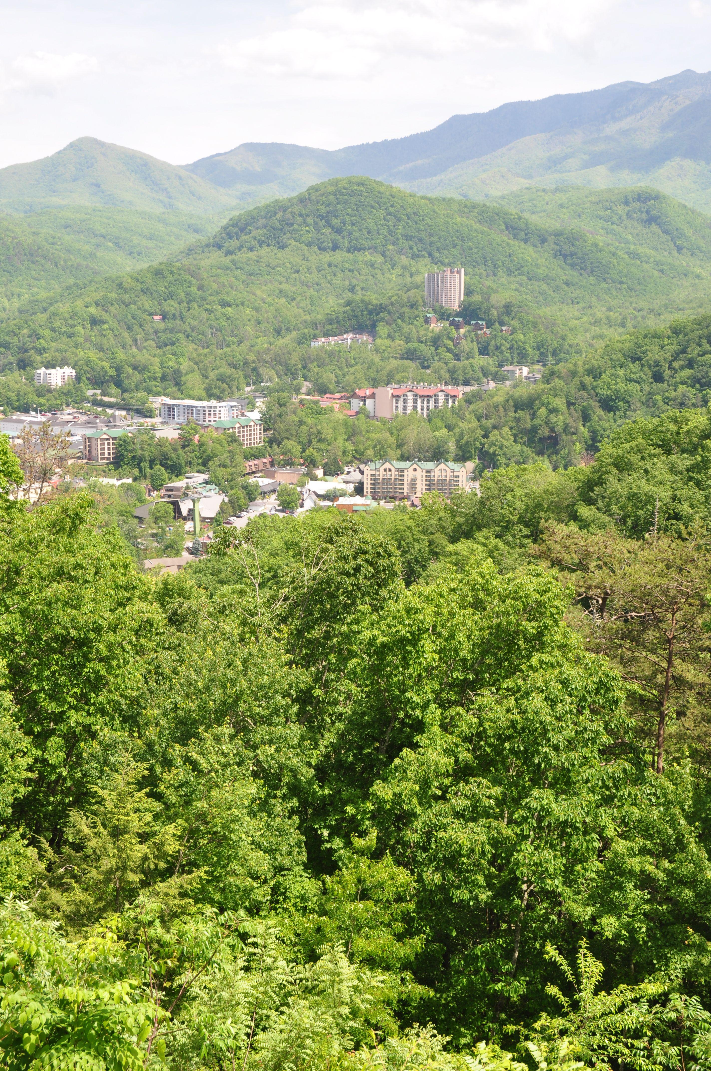 cabins vacation bear tn rental property black gatlinburg in hideaway redawning sevierville