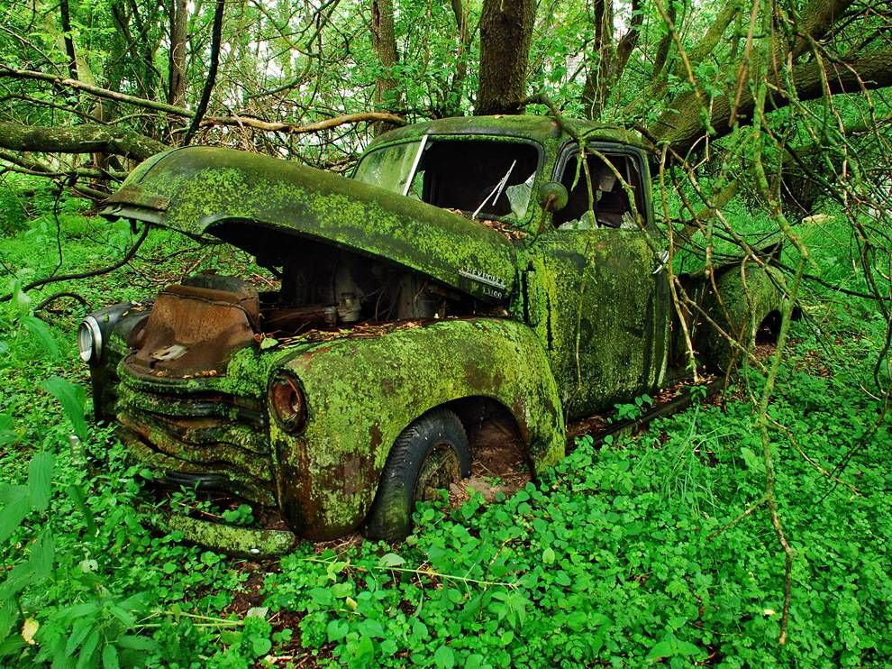 An old pickup truck as mammy's car, just for decoration. covered with moss. .