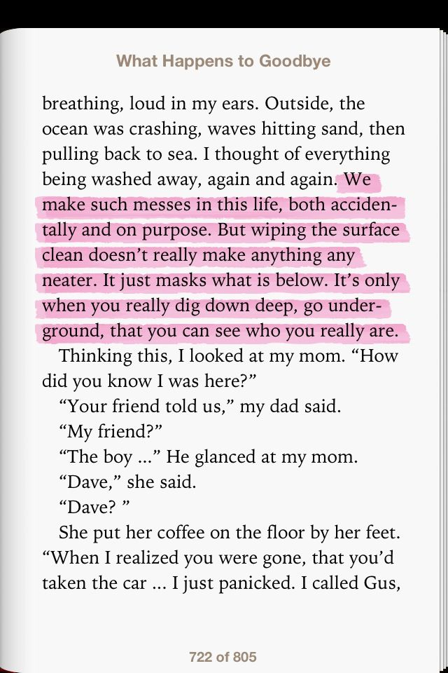 What Happened to Goodbye by Sarah Dessen | Novels Read in the ...