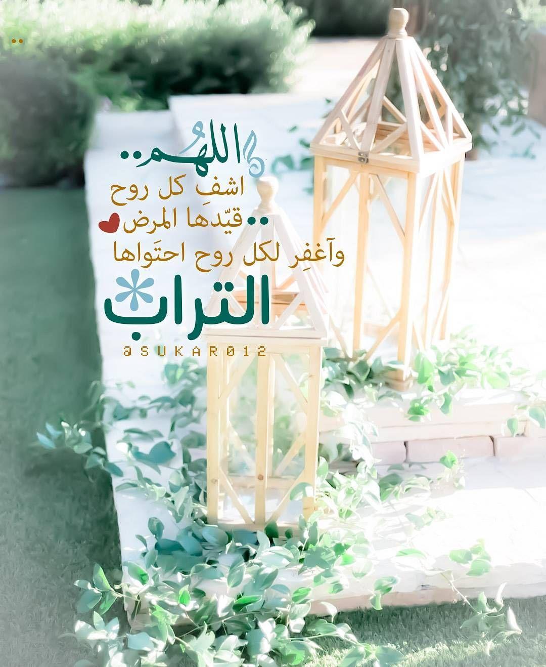 اللهم اشف كل روح قيدها المرض واغفر لكل روح احتواها التراب Words Of Wisdom Quotes Islamic Pictures Quran Verses