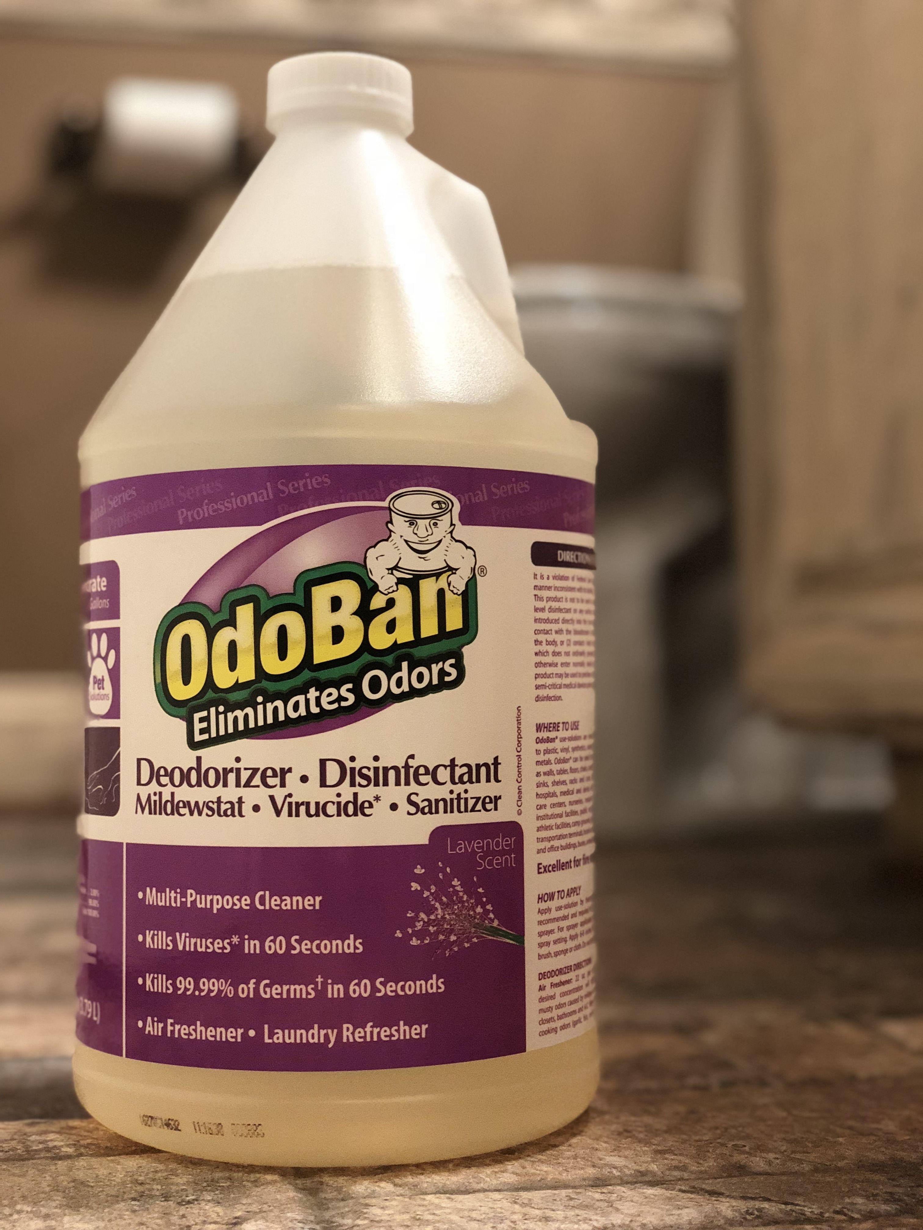 The Best Multi Purpose Cleaner Multipurpose Cleaner Mold And Mildew Odor Eliminator