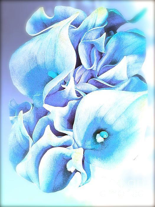 Calla Lily soft lilac and blue:Saundramylesart
