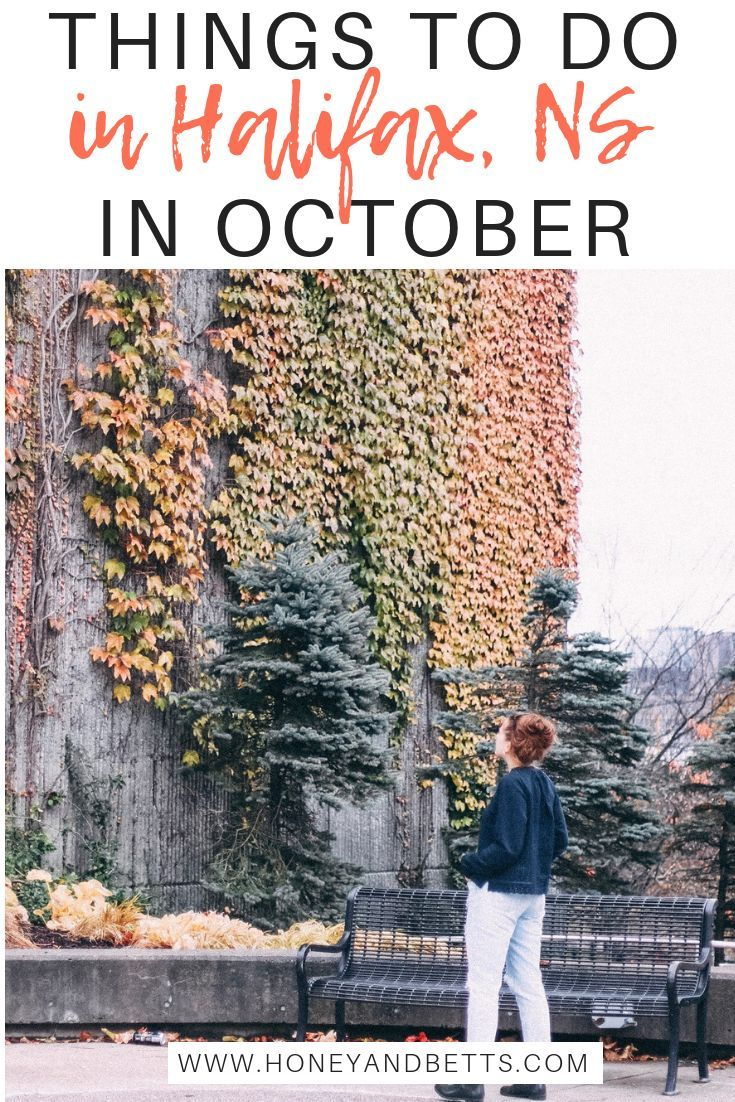 Edmonton travel blogger Hannah from Honey & Betts shares the ultimate, unique things to do in Halifax in October! Check out what leisurely adventure she while visiting Halifax, Nova Scotia in the fall. #canada #travel #novascotia #travelblogger